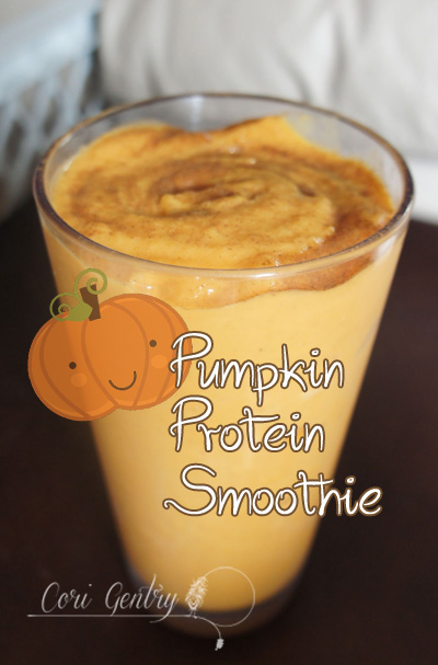 Pumpkin Protein Smoothie for Pregnant Mamas   /  15g of Protein  /  Cori Gentry  /  Healthy Pregnancy